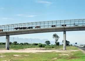 Cattle Bridge