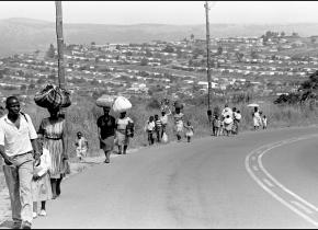 People Flee Violence, Natal